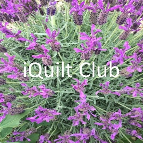 iQuilt Club